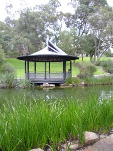 One of many idyllic spot in Perth's enormous King's Park.