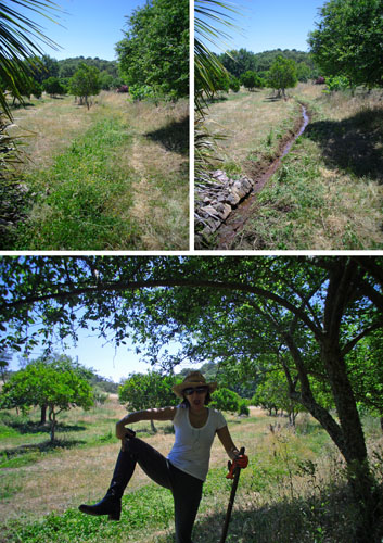 irrigation canal before and after done by woman in work exchange programs