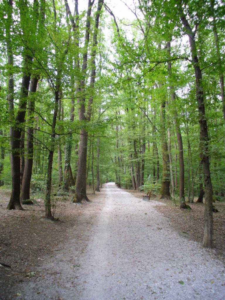 maksmir park zagrab croatia trail