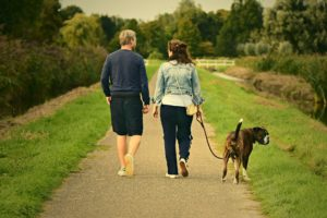 Exchange time walking dogs and tending to other pets while house sitting. Be prepared to go on long daily walks like this couple with the dog!