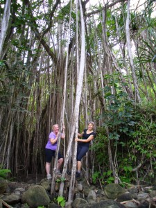 Linda and I (gently) rocking the Banyan tree on our waterfall hike!