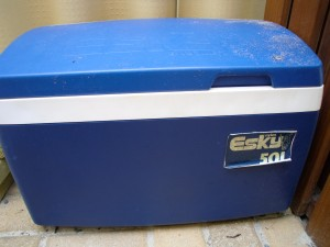 "A cooler, by any other name, would be an Esky. (Or a ""chilly bin"" in NZ. See? Some things are different!)"