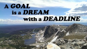 A goal is a dream with a deadline - the cost of a rtw ticket is worth it if you have specific goals!