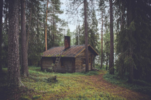 house sitting job in a cabin in the woods for house sitters america review