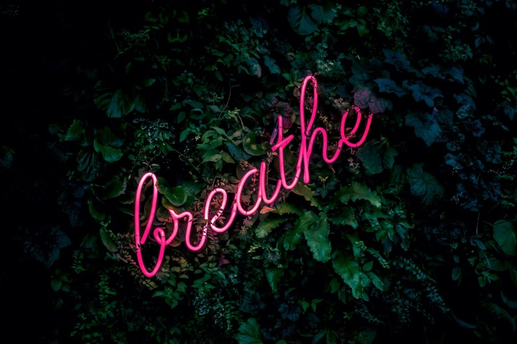 neon sign with the word breathe in cursive set against a backdrop of plants